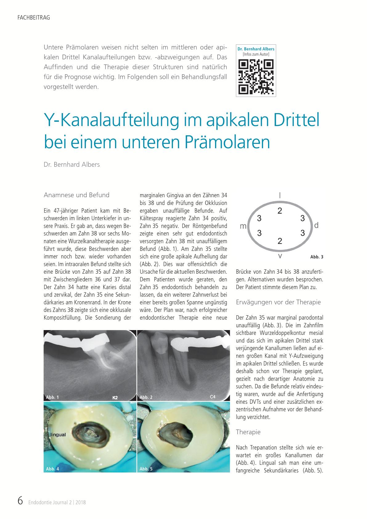 Großzügig Anatomie Der Brücke Ideen - Anatomie Ideen - finotti.info